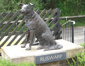 Another more modern feature of Garsdale station is the bronze statue on the southbound platform of Graham Nuttall's Border Collie Ruswarp. Graham Nuttall was one of the founding members of the group set up in the 1980s to save the Settle-Carlisle Railway from closure but disappeared while walking in the Welsh mountains on 20 January 1990. His body was found on 7 April 1990. Ruswarp had stood guard over his owner's body for 11 weeks. The sculpture by JOEL is a memorial to both Graham Nuttall and Ruswarp and was unveiled on 11 April 2009, 20 years after the line was saved from closure. The station buildings, previously out of use due to leaking roofs, were also reopened to the public as part of the ceremony